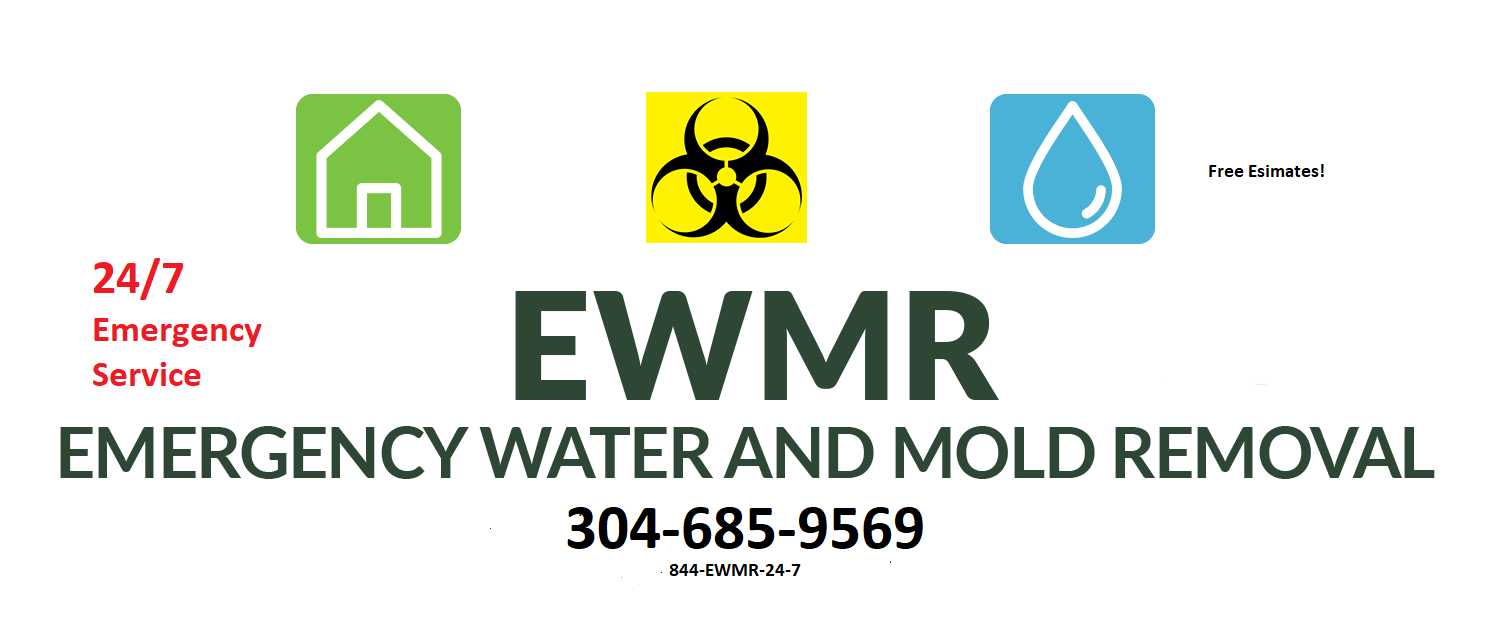 emergency water and mold removal
